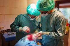Patella luxatie.  Knieschijf ligt uit de geul in het bovenbeen. Uitdiepen van de geul en mogelijke crista transplantatie.
